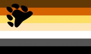 Descrição:  Sete faixas horizontais, de cima pra baixo, marrom, caramelo, mostarda, bege, branco, cinza escuro e preto. À esquerda, na altura das quatro primeiras faixas, uma pata de urso preta inclinada.