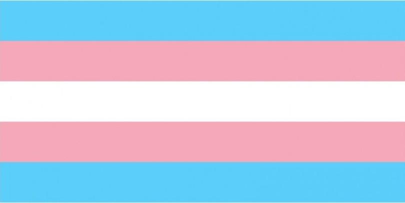 Bandeira do Orgulho Trans. Descrição: Cinco faixas horizontais, de cima pra baixo, azul, rosa, branco, rosa e azul novamente.